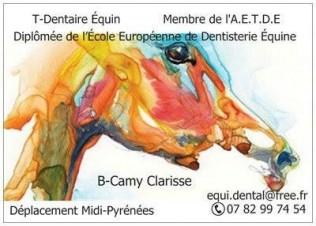 T-Dentaire Équin
