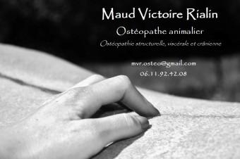 Maud Victoire Rialin - Ostéopathe animalier