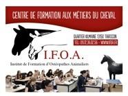 Institut de formation d'ostéopathes animaliers