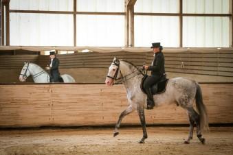 Ecole d'Equitation Equizones