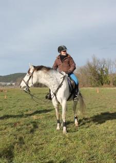 Dayane Collart - Monitrice d'équitation indépendante