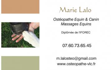 Ostéopathe équin et canin, massages équins