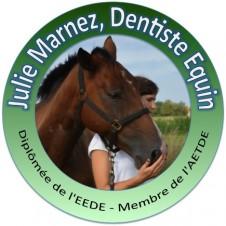 Julie Marnez Dentiste Equin