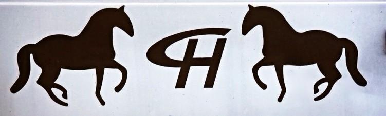 Elevage Haÿs Chevaux Lusitaniens