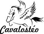 Cavalostéo - Ostéopathe équin & humain