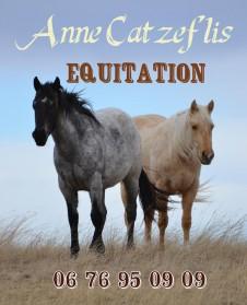 Anne Catzeflis Equitation