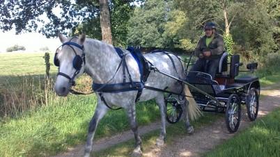 Equi'Attelage - Cavaliers des Fontenelles