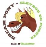 Ferme Equestre Dream Pony