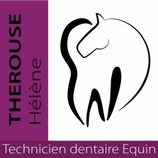 Technicien dentaire equin